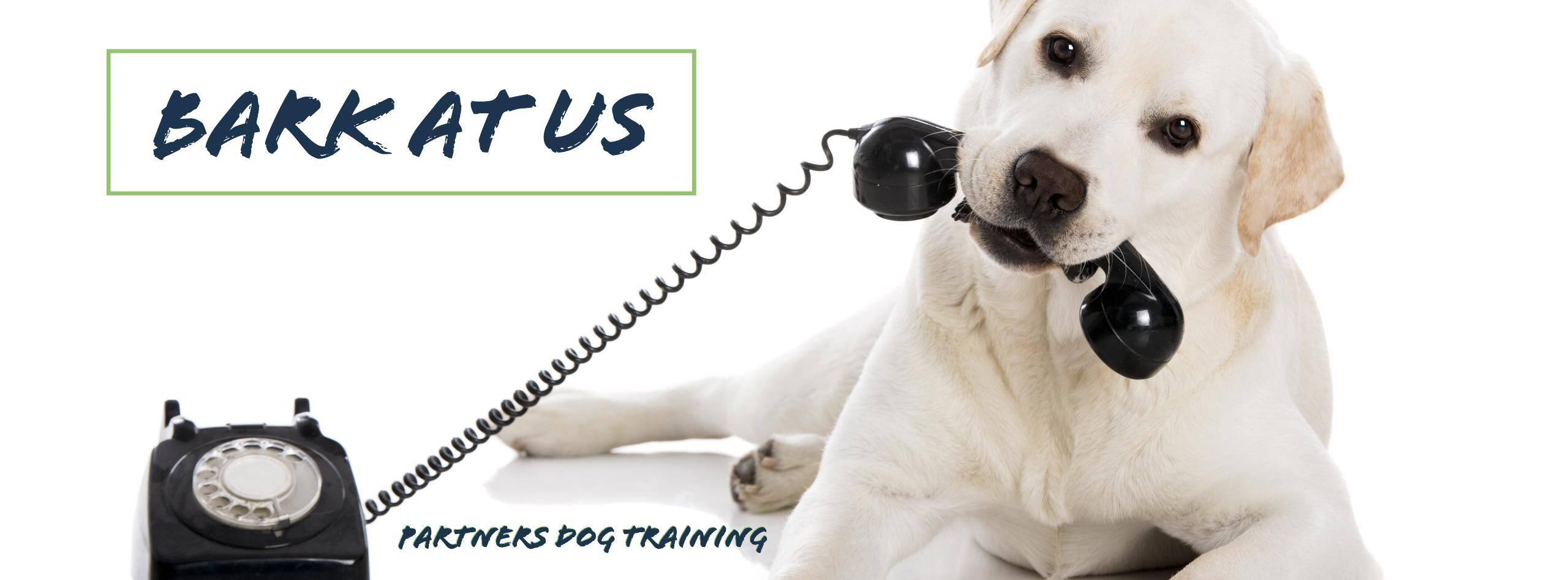 Bark at us at Partners Dog Training
