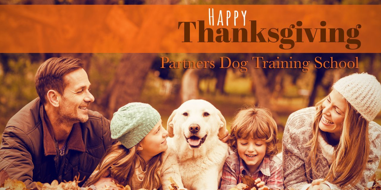 Four Reasons Why Dogs LOVE Thanksgiving
